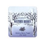 [S] Skinfood Watery Berry Toner (for men) 1ml*10ea