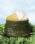 TONYMOLY From Clear Artemisia 2 Layer Calming Cream 64ml (32ml+32ml)