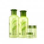 INNISFREE Green Tea Balancing Skin Care Set 5 items