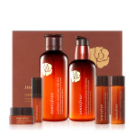 INNISFREE Cauliflower Mushroom Vital Skin Care SET