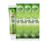 SONGYEOM toothpaste 160gX3ea