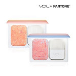 VDL Expert Color Cheek Book Mini (pantone) #NO.1