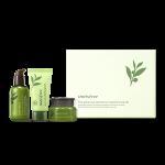 INNISFREE The Green Tea Seed Serum Special Set 80ml+20ml+30ml