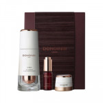 [L] DONGINBI Red Ginseng Power Repair Essence Set