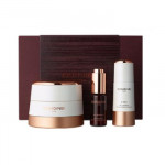 [L] DONGINBI Red Ginseng Power Repair Cream Set