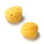 [R] FILLIMILLI Natural Sponge For Face 1ea