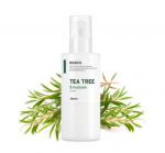 [R] A'PIEU Nonco Tea Tree Emulsion 210ml