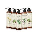 [Mediflower] Bonita Garden Body Lotion / Cleanser 500ml