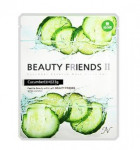 Beauty Friends II Essence Mask Sheet [Cucumber] 23gx10ea