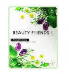 Beauty Friends II Essence Mask Sheet [Aroma] 23gx10ea