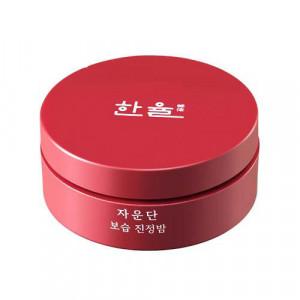 HANYUL Ja Woon Dan Moisturizing Care Balm 20g