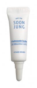 [S] ETUDE HOUSE Soon Jung 5 Panthensoside Cica Balm 5ml*2ea