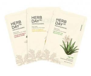 THE FACE SHOP Herb Day 365 Master Blending Mask 23ml